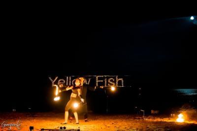 Фото обьекта Желтая Рыба №216479