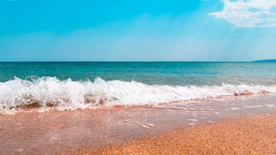 Фото обьекта Золотой пляж №221169