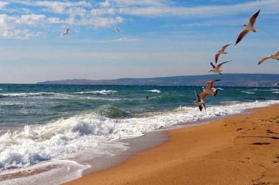 Фото обьекта Золотой пляж №221634
