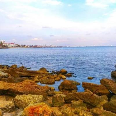 Фото обьекта Пляж Суворинские Камни  №221245