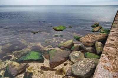 Фото обьекта Пляж Суворинские Камни  №221247