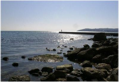 Фото обьекта Пляж Суворинские Камни  №221249