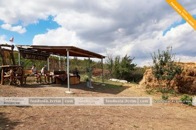 Фото обьекта Конные прогулки на Тепе-Оба №210638