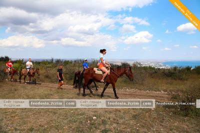 Фото обьекта Конные прогулки на Тепе-Оба №210648