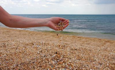 Фото Пляж Камешки  №167649