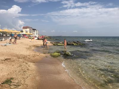 Фото Пляж 117 №37111