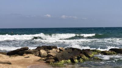 Фото Пляж 117 №43457