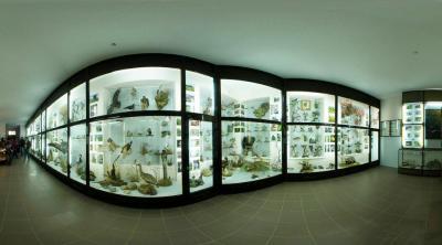 Фото обьекта Музей истории и природы Кара-Дага №149548