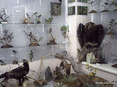 Фото обьекта Музей истории и природы Кара-Дага №218507