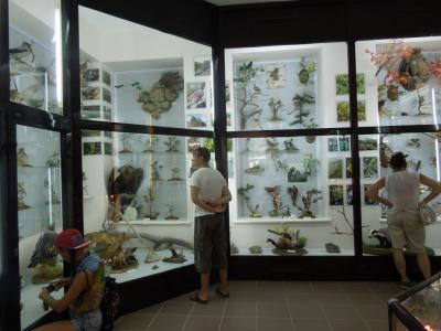 Фото обьекта Музей истории и природы Кара-Дага №218509