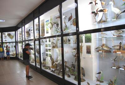 Фото обьекта Музей истории и природы Кара-Дага №218515