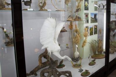 Фото обьекта Музей истории и природы Кара-Дага №218517