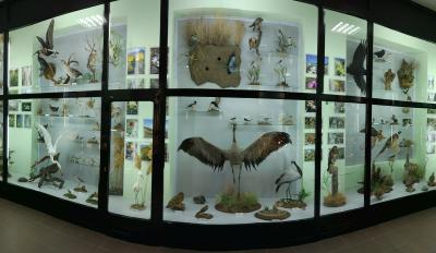 Фото обьекта Музей истории и природы Кара-Дага №218520