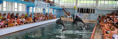 Фото обьекта Карадагский дельфинарий №149550