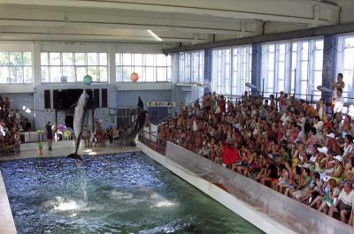 Фото обьекта Карадагский дельфинарий №149552
