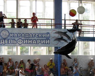 Фото обьекта Карадагский дельфинарий №219111