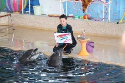 Фото обьекта Карадагский дельфинарий №219113