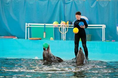 Фото обьекта Карадагский дельфинарий №219117