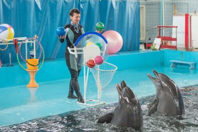 Фото обьекта Карадагский дельфинарий №219118