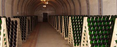 Фото обьекта Дом шампанских вин Новый Свет №140587