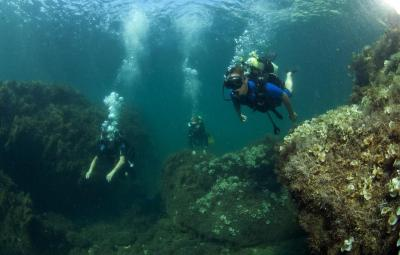 Фото обьекта Подводный клуб
