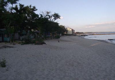 Фото обьекта Золотой Пляж №174442