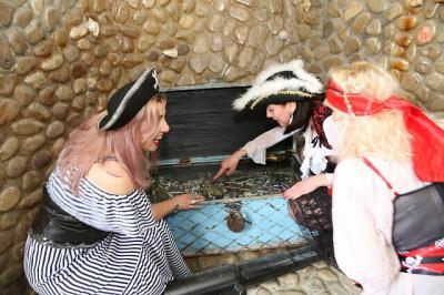 Фото обьекта Отдых на пиратском корабле №211474