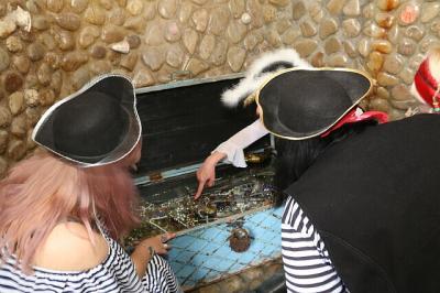 Фото обьекта Отдых на пиратском корабле №211475