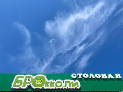 Фото обьекта Столовая Брокколи №225493