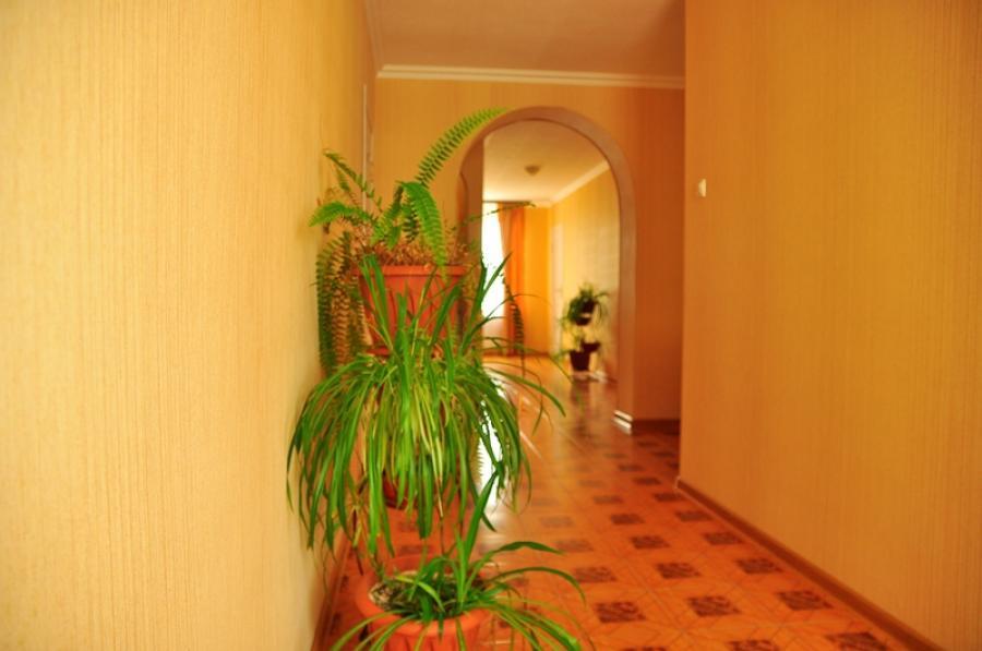 витязево радуга отель фото количеству памятников гумбольтам